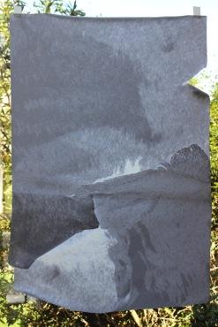 O.T., 2014, skinned photo, 75 x 50 cm, window